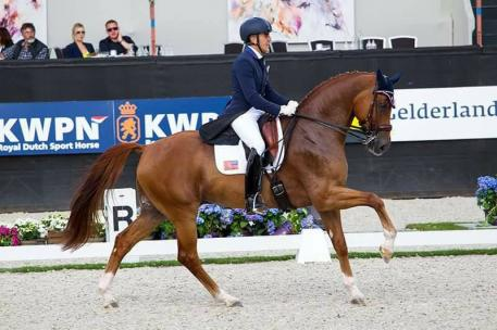Dr. Cesar Parra and Don Cesar were proud to represent the United States as the only US pair to compete in the FEI World Breeding Dressage Championships