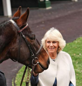 Her Royal Highness The Duchess of Cornwall being greeted by a Thoroughbred at a reception for Brooke USA in Kentucky in March, 2015.