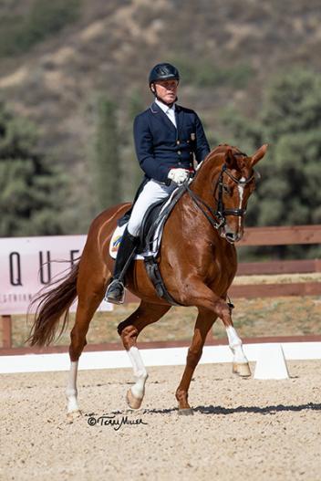 Jan Ebeling stunned the judges in the USEF Developing Prix St. George riding Bellena. (Photo: Terri Milller)