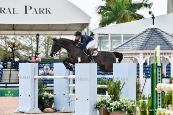 Emanuel Andrade, 19, of Venezuela was named the High Amateur-Owner Circuit Champion with Walter 61 at the 2016 Winter Equestrian Festival in Wellington, FL.