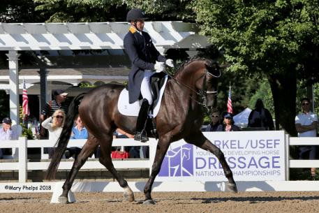 Endel Ots and Lucky Strike Markel/USEF Developing Horse Prix St. Georges Dressage National Champion 2018