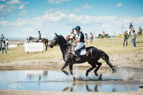 The Eventing Derby took place at The Colorado Horse Park on Friday, September 15, offering several different levels of competition.