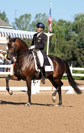 Dr. Cesar Parra, Fashion Designer OLD, Developing Prix St. Georges, 2016 Markel/USEF Young and Developing Horse Dressage National Championships