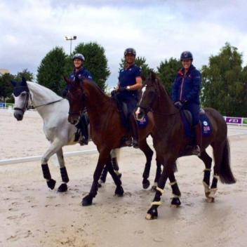 Great Britains team out for a hack (L-R) Half Moon Delphi, Nip Tuck and Valegro (Photo via Charlotte's Facebook)