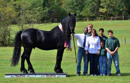 World and National Champion Friesian Stallion, Leendert Leopold, with the Griffin Sport Horse Team: Bruce, Staci, and their children Sean, Bruce, Brandon, and Janae Griffin (Photo courtesy of Griffin Sport Horse Team)