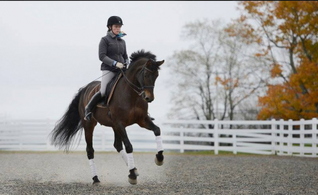 Lead trainer and head rider Gwyneth McPherson on Pineland Farms' Eskandar, 2014 USDF National First Level Champion.