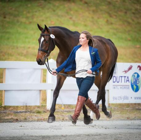 CCI ** Competitor Hannah Sue Burnett and Cooley Dream