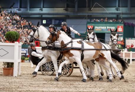 he 3rd place for Ijsbrand Chardon (NED) and his Four-in-Hand team in the FEI World Cup Driving qualification, Leipzig - Partner Pferd 2017