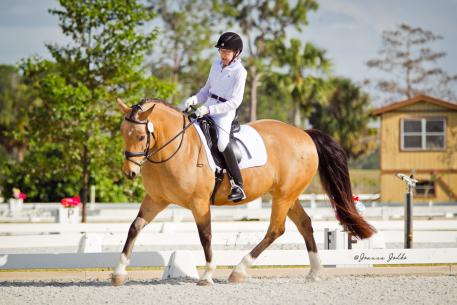 Dale Dedrick debuts Bardondales Ultrasuede at Welcome Back to White Fences IIIin preparation for the CPEDI3* at the Adequan Global Dressage Festival this weekend.