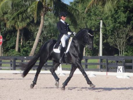 Jaime Amian and team members, including Lauren Knopp on Amian's horse Legend, won first place in the Gold Coast Fall Fling Team Competition at the Global Dressage Stadium