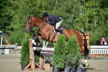 Jimmy Torano and Lion Hearted, vermont summer festival 2015