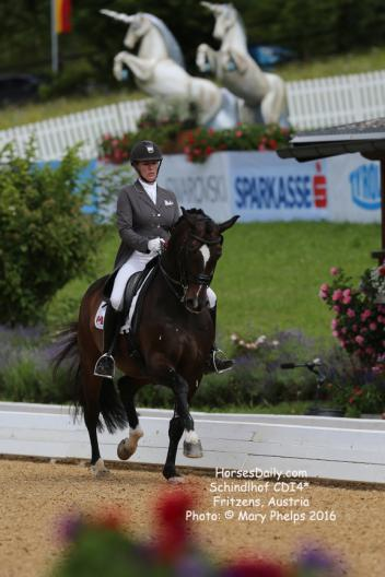 Karen Pavicic (CAN) and Don Daiquiri, Oldenburg gelding by Don Cardinale.