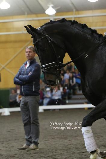 Carl Hester watches Giuliano B ©Mary Phelps 2017
