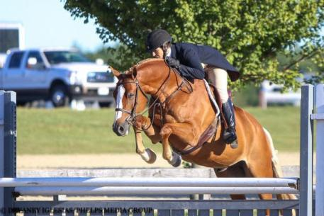 Katie Cooper, Cherry Knoll Farm, Sandlot, Quentin Fall Classic, $2,500 USHJA National Hunter Derby