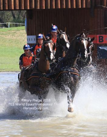 Koos de Ronde (NED) winner of the marathon phase of the FEI World Driving Championships for Four-In-Hand horses ©Mary Phelps 2018