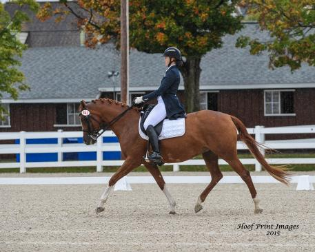 Lauren Annet, Savannahh, Dressage at Devon 2015