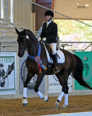 Dr. Lisa Teske's leap of faith in purchasing a youngster paid off with a Great American/USDF Region 7 victory at the 50th Anniversary CDS Championship Show.