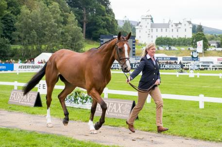 British team member Nicola Wilson trots up One Two Many at the first horse inspection for the Longines FEI European Eventing Championships which starts tomorrow at Blair Castle in Scotland (GBR). (Photo: Jon Stroud/FEI)