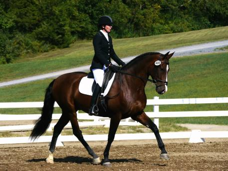 Lynnette Jacobs competes at the IALHA National Championships on Omega Alpha Healthy Horse Award winner, Entero VDI (Photo courtesy of Jerrad Jacobs)