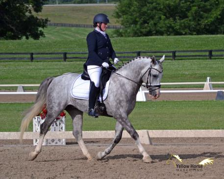 Kathryn Barry, North American Sport Pony, Magnum, Training Level Open