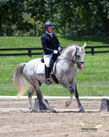 Kathryn Barry and Magnum claimed the 2017 National Dressage Pony Cup Six-Year-Old Futurity title.