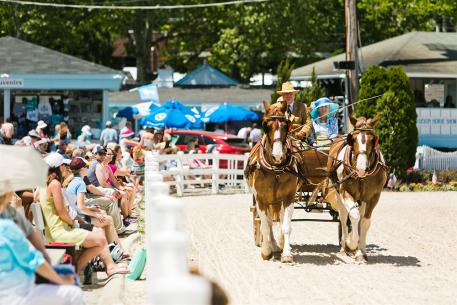 The Devon Horse Show and Country Fair is a prestigious horse show with a special and historic significance to pleasure carriage driving. (Photo: Brenda Carpenter)