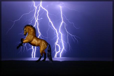 Specified Perils Insurance helps keep you covered for things such as fire and lightning, earthquakes, electrocution, drowning, transit risks and attack by wild animals.