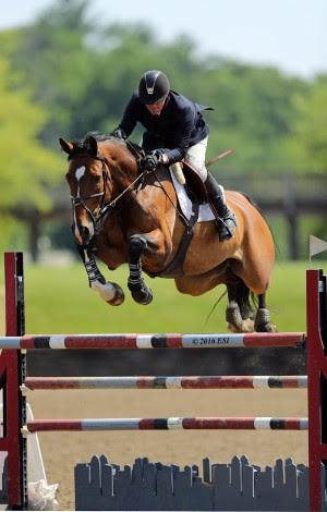 Mclain Ward and Best Buy on their way to a 5,000 KindredBio Jumper Prix win.