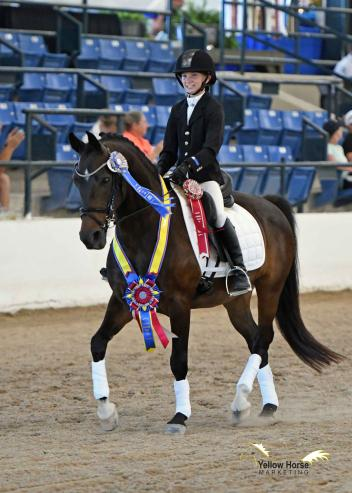 Eleven-year-old Olivia Brown celebrates her First Level 16 & Under victory aboard Balthazar at the 2017 National Dressage Pony Cup Championship Show.