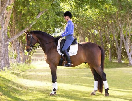 Olympian and U.S. Assistant Dressage Youth Coach Charlotte Bredahl-Baker becomes the newest Custom Saddlery MVR