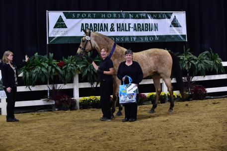 Colleen Kramer and Akceptional IA+ glowing gold while accepting their Omega Alpha Healthy Horse Award. (Photo: Don Stine Communications and Photography)