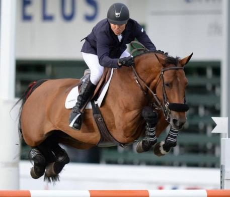 One of the 20 embryos is a grandchild of the famous grand prix mare Gazelle ter Elzen  (Kashmir van't Schuttershof-Diva 'ter Elzen' by Indoctro) ridden by Kent Farrington (c)Spruce Meadows Media Services