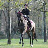 Through funding support from APAHA, American riding teachers are being given the opportunity to ride with Col. Patrick Teisserenc of the French National Riding School in Saumur, France.