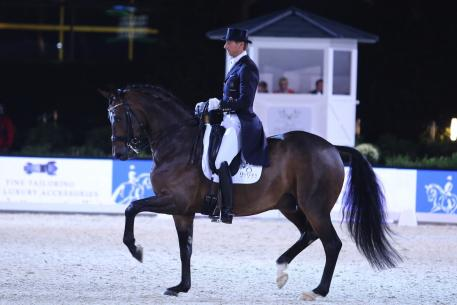 Patrik Kittel, Custom Saddlery MVR