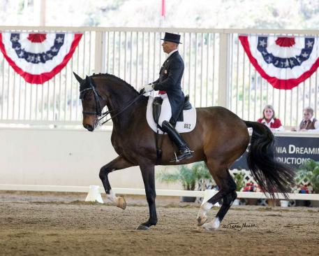 Steffen Peters & Legolas 92 were once again victorious in the CDI Grand Prix Freestyle at the Dressage Affaire CDI3*.