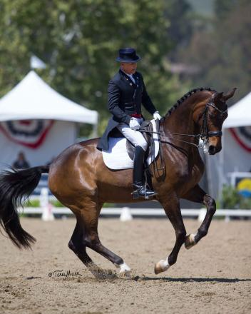 Steffen Peters, Rosamunde, Grand Prix freestyle, Festival of the Horse CDI 3*, Terri Miller