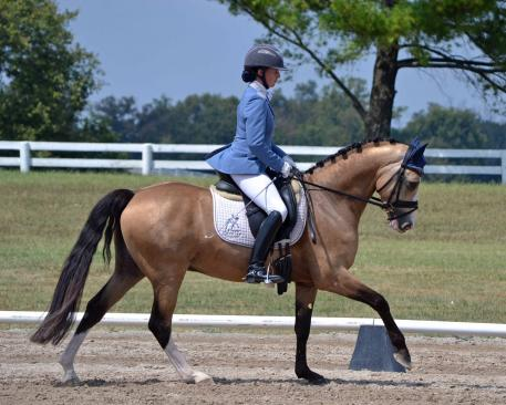 The 2016 NDPC will include Young Pony classes to showcase talented youngsters like Melissa Dowling's four-year-old German Riding Pony Nikolas, ridden by Lauren Chumley