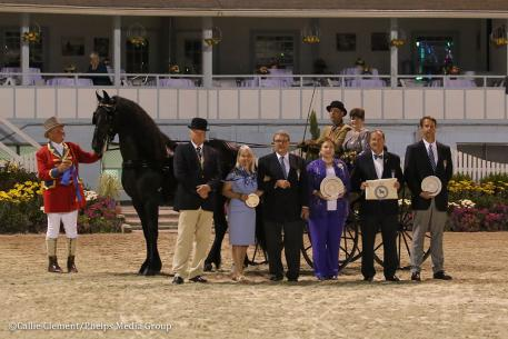 PJ Crowley wins the Single Horse Driving Championship (Photo: Callie Clement/Phelps Media Group)