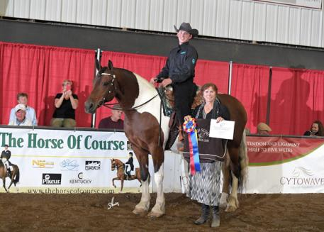 The Horse of Course, High Score Award, Benjamin Boyd, Flying W Farm, Princess Aires Above the Ground,  IFSHA World and Grand National Championship Horse