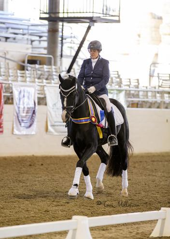 Ruth Shirkey, Wyleigh Princess, USDF Region 7, CDS Championship Show