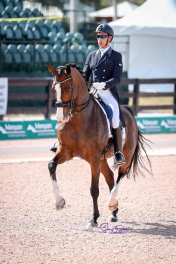 Sahar Daniel Hirosh and Whitman competing during the 2018 Global Dressage Festival in Wellington, Florida. (Photo courtesy of Susan Stickle Photography)