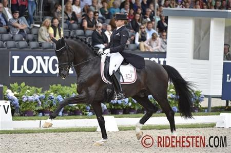 WBFSH Championships, Sezuan, BH Zack, BH Don Schufro, Linette Jæger, FEI/WBFSH is holdi