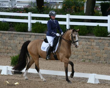 A confident ride by Lauren Chumley of Pittstown, N.J. aboard Melissa Dowling's German Riding Pony Nikolas earned the pair the Fourth Level Open title. Photo by Jennifer M. Keeler