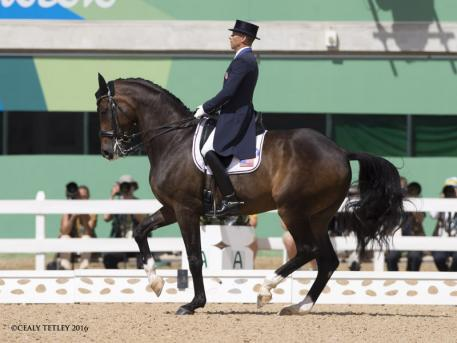 Steffen Peters and Legolas at the Rio Olympics 2016