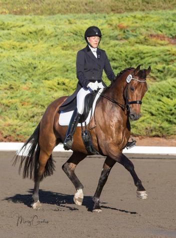 Sue Minton-Edison and Zo'dan showing their true form in the competition ring. (Photo: Mary Cornelius)