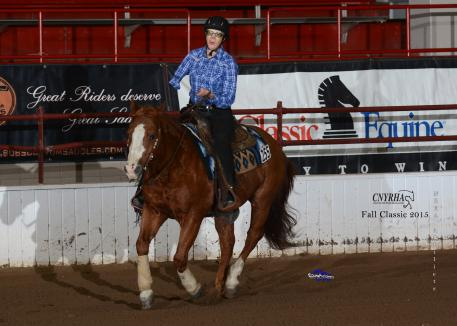 Cataskeeto, owned by Cooper Hicks of NH, with Holly Jacobson shows off his class and experience.
