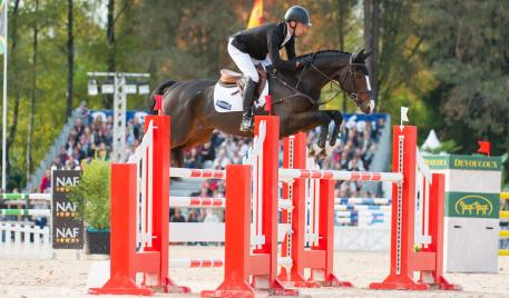 Tim Price of New Zealand riding Wesko taking part in the Show Jumping phase of the CCI Four Star Etoiles De Pau International Horse Trials on Sun 25th October 2015