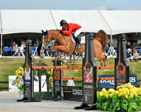 Todd Minikus and Babalou cruise through the Furusiyya FEI Nations Cup CSIO4*, presented by Edge Brewing Barcelona course at HITS Post Time Farm in Ocala, Florida.