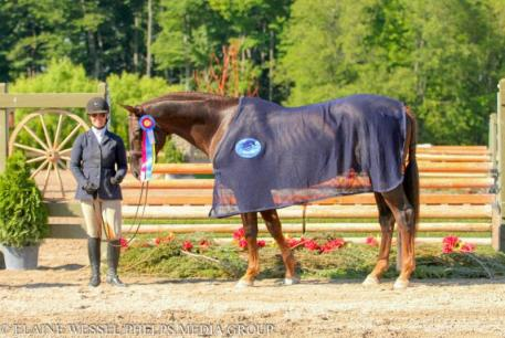 Tommi Clark and Extraordinaire travelled from  California to the Great Lakes Equestrian Festival
