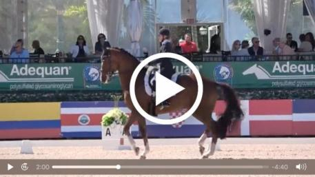 Watch Brittany Fraser and All In's winning grand prix test. (Video: Richard's Equine Video)
